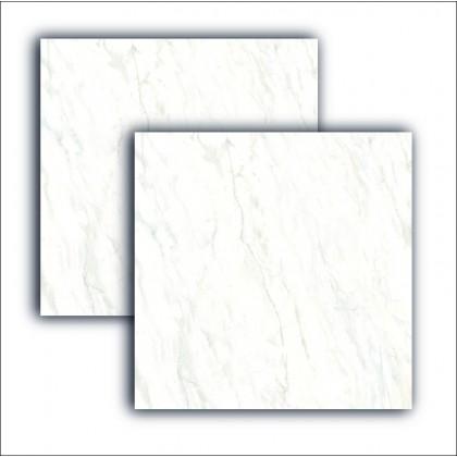 Piso Cerâmico 08692 71x71cm Retificado Acetinado Extra